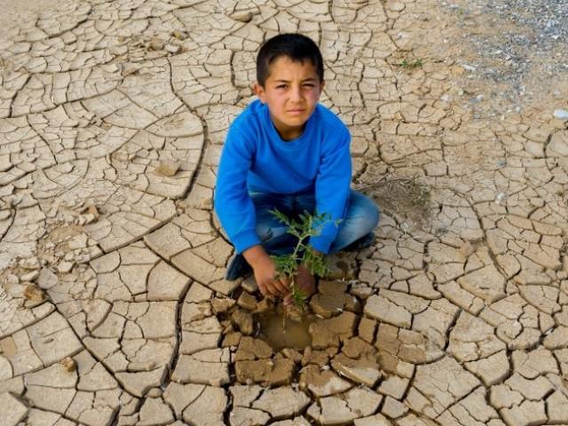 """İşte Alarko Carrier'ın """"Küresel İklim Değişikliği Fotoğraf Yarışması""""nda ödül alan 11 adet fotoğraf..."""