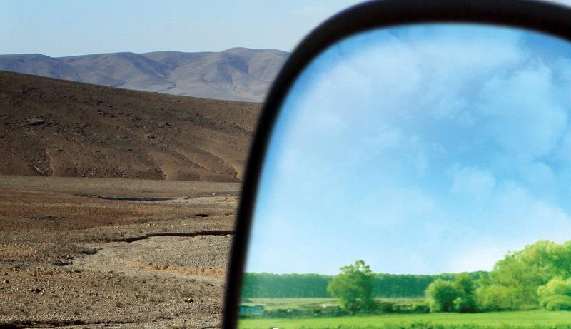Bir lojistik firması 385 bin 166 ağacı kurtardı!